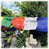 Tibetaanse gebedsvlaggen M