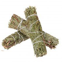 3 Cedar smudge bundels