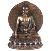Grote medicijnboeddha met aura